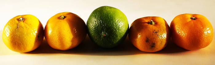 Tutti Frutti by AdamskiPhoto