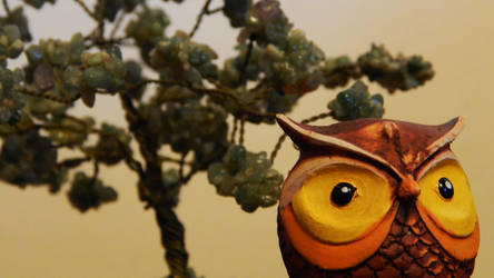 Owl by LautaroVincon