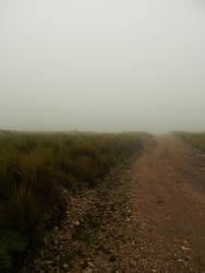 Niebla by LautaroVincon