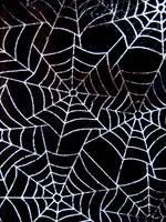 Cobwebs by Cynnalia-Stock