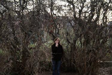 TIM BURTON'S TREE by z0unita