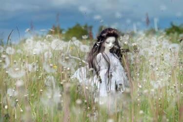 Dandelions like thoughts by Nizzumi