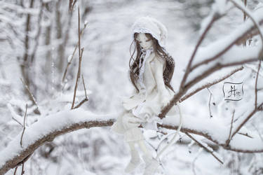 The white by Nizzumi