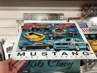 Mustang Past  Present by TaionaFan369