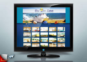 Blue Water Estate website by Infoworks