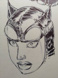 DSC CATWOMAN QUICKSKETCH ON MOLESKINE by AgostinoF