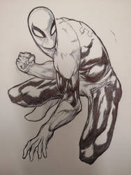 SPIDEY SKETCH FOR A FRIEND'S NEPHEW by AgostinoF