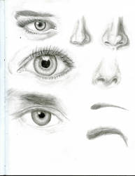 Eyes, Noses, and Eyebrows by RYUSUSKE