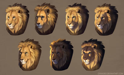 Lit lions by Chiakiro