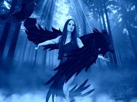 Crows by bebasv