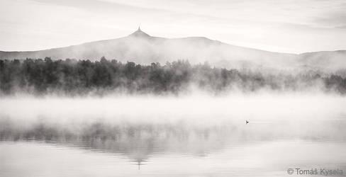 duck a la fog by kihsleek