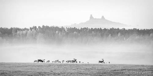 a morning in czech paradise by kihsleek