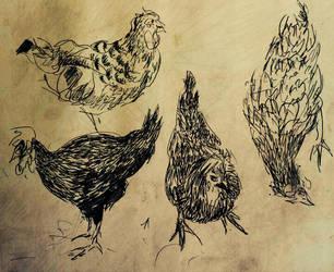 Chicken Shack, Ink on Paper, 2009 by EkashmaDas