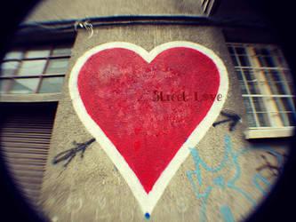 Street Love by igloolita