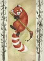 Red Panda by LMMegyesi