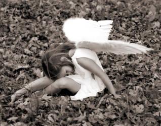 Fallen Angel by olivestar