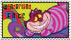 Wonderland Fanatic by rainbowonfire