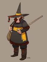 The Eccentric Professor Firebolt by zazB