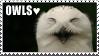 Owl Stamp by soyu-k