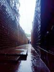 La lluvia del otro dia by ODH77