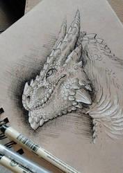 Toned dragon portrait by DerOjor