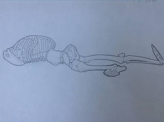Life-Drawing Class - Skeleton 2 by Rose-Hunter