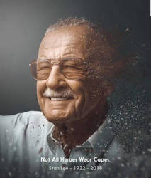 FOR STAN LEE by MegaZygarde