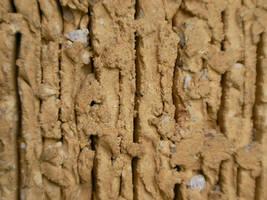 Brick Texture by scetxr-efx
