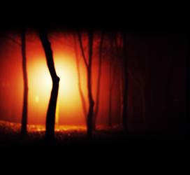 Nacht und Nebel by FlorianHesse