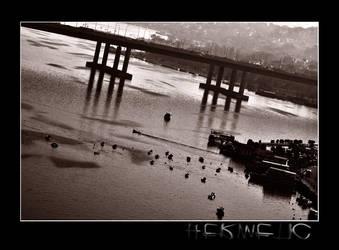 BRIDGE by Hermetic-Wings