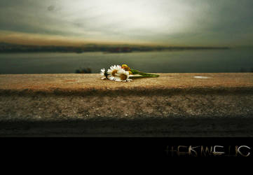For Loretta by Hermetic-Wings