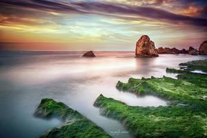 green dream by agalip
