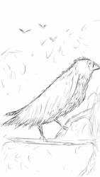 Sketch A Bird by Cirias