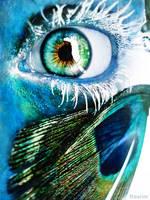blue eye peacock's paradeyes by ftourini