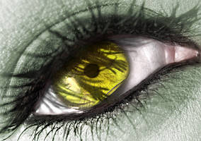 Grab my eye by ftourini