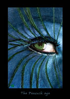 The peacock eye by ftourini