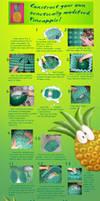 Huge pineapple tutorial by ftourini