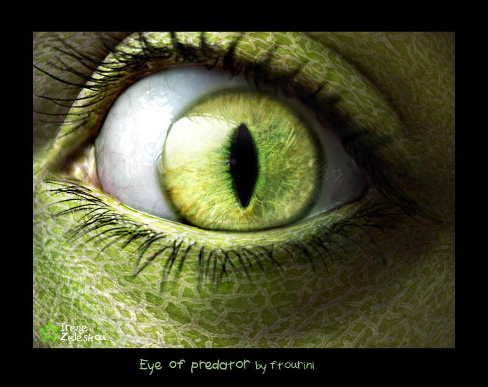 eye of a predator by ftourini