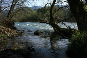 River by Banana-Workshop