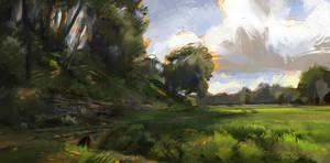 A Field by Skvor