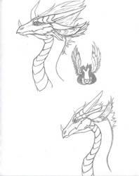 Rivetra dragon concepts by blackrosedragon491