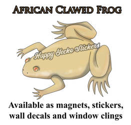 Albino African Clawed Frog by beachgecko