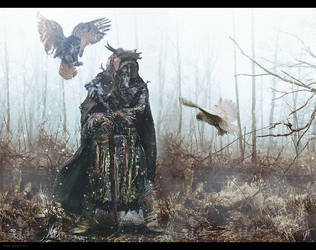 The old man and the owls by gregmks
