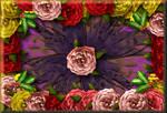 The Rose Garden by Korra