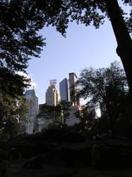 Central Park, NY by dreamsphoto