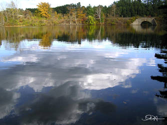 Pond Painting by dreamsphoto
