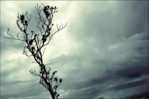 Yggdrasil by arhcamt