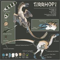 Tirrhopi by SageKorppi