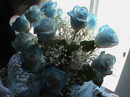 Beautiful Blue Roses 2 by SuperSonicGirl79135