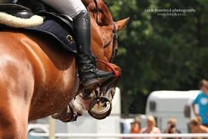 Show jumping detail by bureska